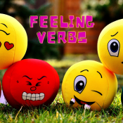 Feeling Verbs – Conjugation